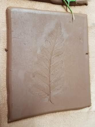 the impression of a fern pressed in clay