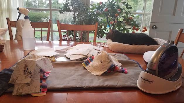 Ironing station on the kitchen table with a cat near by overlooking a beautiful backyard.