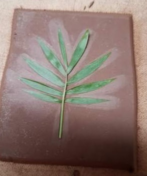 a palm fron pressed in clay
