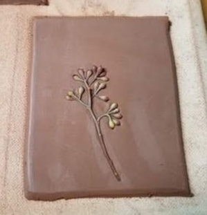 eucalyptus berries pressed in a rectangle of clay